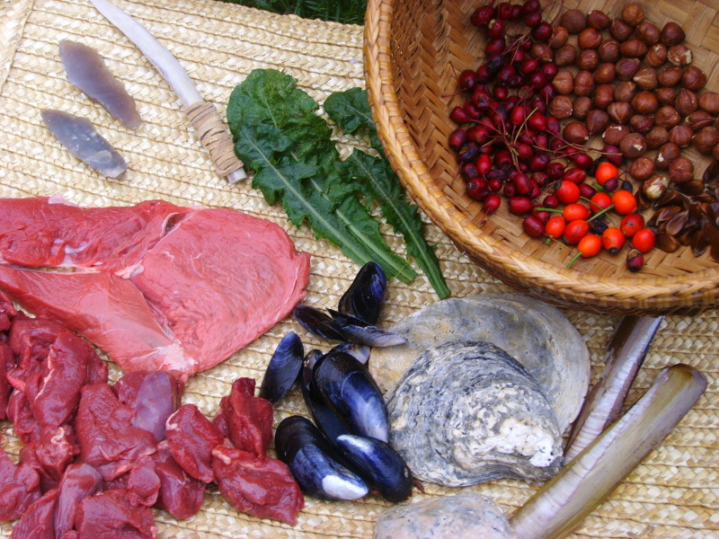 easy beginners guide to the paleo diet